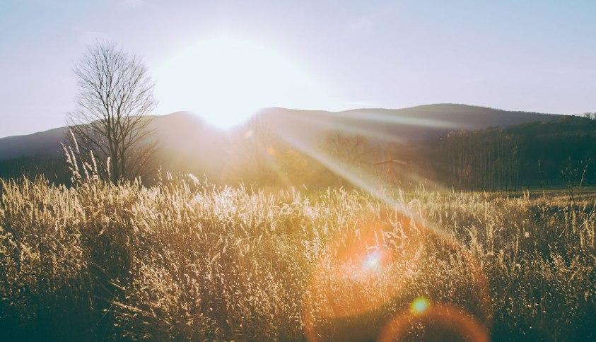 paysage enseoleillé
